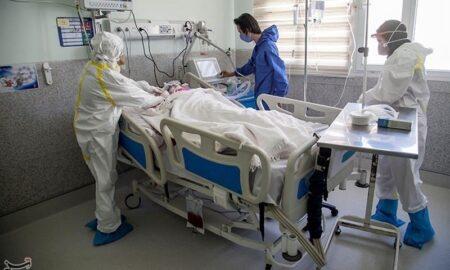 Coronavirus in Iran: 233 New Deaths Recorded